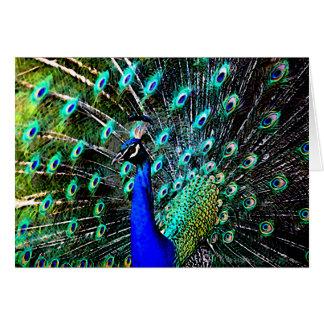 Peacock Batik 2 (blank card) Card