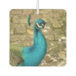 Peacock Beautiful Blue Bird Nature Photography Air Freshener