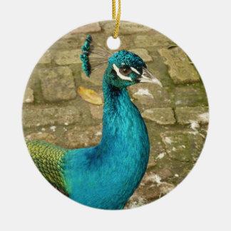 Peacock Beautiful Blue Bird Nature Photography Ceramic Ornament