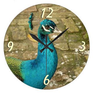 Peacock Beautiful Blue Bird Nature Photography Large Clock
