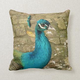 Peacock Beautiful Blue Bird Nature Photography Throw Pillow