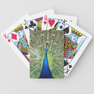 Peacock Bicycle Playing Cards