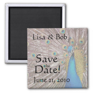 Peacock Bird Animal Save the Date Wedding 2 Inch Square Magnet