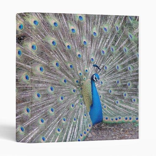 Peacock Bird Binder