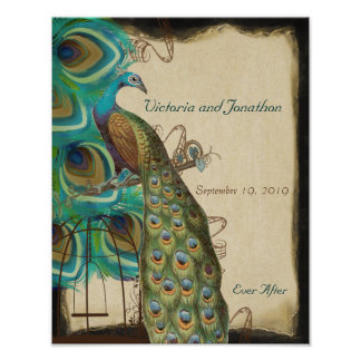 Peacock Bird Cage Print Wedding Reception