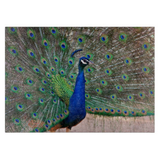 Peacock bird display cutting board