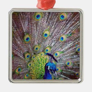 Peacock bird feathers metal ornament