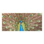 Peacock bird feathers photo custom name bookmark full color rack card