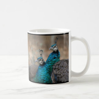 Peacock Bird Feathers Wildlife Animals Coffee Mug