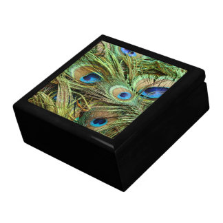 Peacock Bird Feathers Wildlife Animals Gift Box