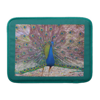 Peacock Bird Feathers Wildlife Animals MacBook Sleeve