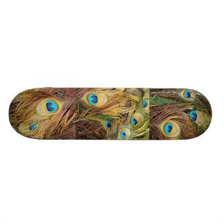 Peacock Bird Feathers Wildlife Animals Skateboard