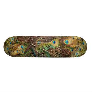Peacock Bird Feathers Wildlife Animals Skateboard Deck