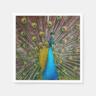 Peacock Bird on Display Standard Cocktail Napkin