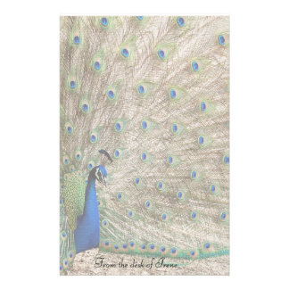 Peacock Bird Stationery