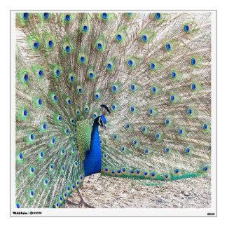 Peacock Bird Wall Decal