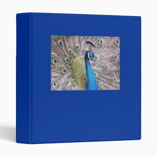 Peacock Bird Wildlife Animal Feathers Binder