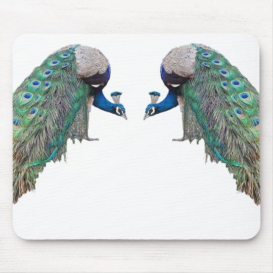 Peacock Bird Wildlife Animal Feathers Mouse Pad