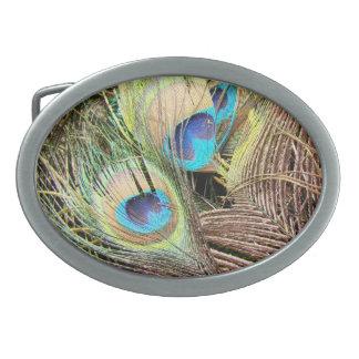 Peacock Bird Wildlife Animal Feathers Oval Belt Buckle