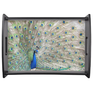 Peacock Bird Wildlife Animal Feathers Serving Tray
