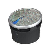 Peacock Bird Wildlife Animals Feathers Bluetooth Speaker
