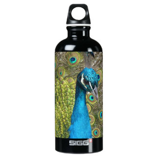 Peacock bird with beautiful feathers aluminum water bottle