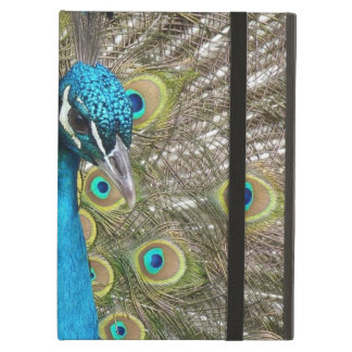 Peacock bird with beautiful feathers iPad air cases