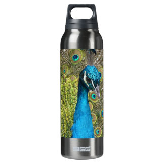 Peacock bird with beautiful feathers SIGG thermo 0.5L insulated bottle
