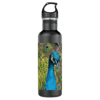 Peacock bird with beautiful feathers stainless steel water bottle