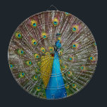 "Peacock Bird with Royal Plumage on Display Dartboard<br><div class=""desc"">Original artwork of a peacock with his plumage on display.  The iridescent tail feathers glow in shades of blue,  teal,  green,  and purple giving this proud bird the appearance of royalty.  The vibrant colors of this majestic pea fowl shine in this lifelike art that fills the entire design area.</div>"