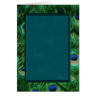 Peacock blank card for any event or occscasion
