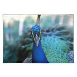 Peacock blue head on image place mats