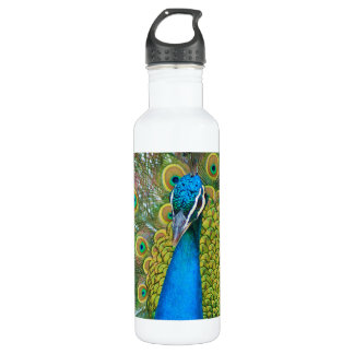 Peacock Blue Head with and Colorful Tail Feathers 24oz Water Bottle