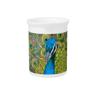 Peacock Blue Head with and Colorful Tail Feathers Beverage Pitcher