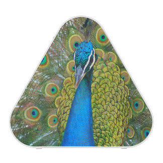 Peacock Blue Head with and Colorful Tail Feathers Bluetooth Speaker