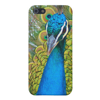 Peacock Blue Head with and Colorful Tail Feathers Cover For iPhone SE/5/5s