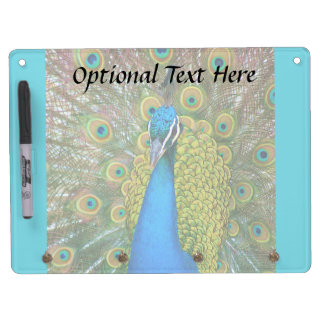 Peacock Blue Head with and Colorful Tail Feathers Dry Erase Board With Keychain Holder