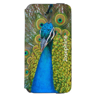 Peacock Blue Head with and Colorful Tail Feathers iPhone 6/6s Wallet Case