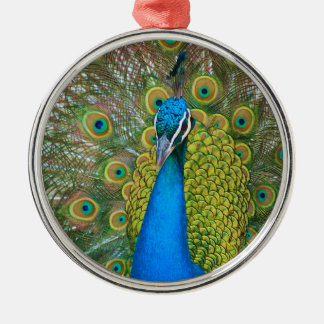 Peacock Blue Head with and Colorful Tail Feathers Metal Ornament