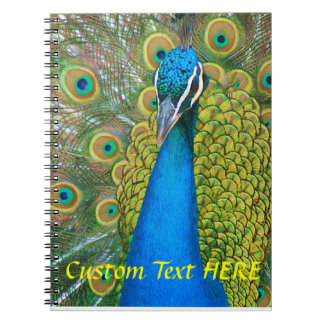 Peacock Blue Head with and Colorful Tail Feathers Notebook