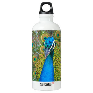 Peacock Blue Head with and Colorful Tail Feathers Water Bottle
