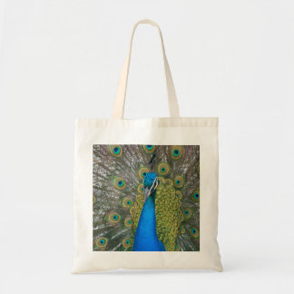 Peacock Blue Head with and Tail Feathers Tote Bag