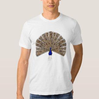 Peacock Blue Men's Shirts