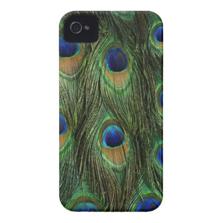 Peacock Body Fur Feather BlackBerry Bold Case Cove