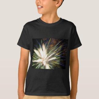 Peacock Burst T-Shirt