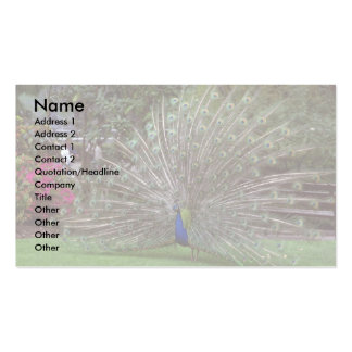 Peacock Business Cards