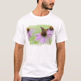 Peacock butterfly (Inachis io) drinking nectar T-Shirt