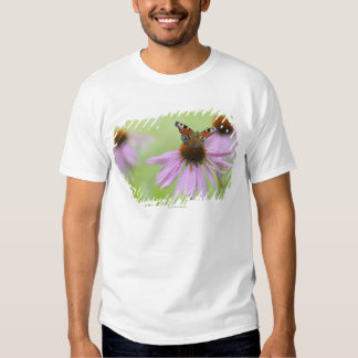 Peacock butterfly (Inachis io) drinking nectar T-shirts
