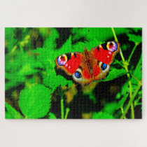 Peacock Butterfly. Jigsaw Puzzle