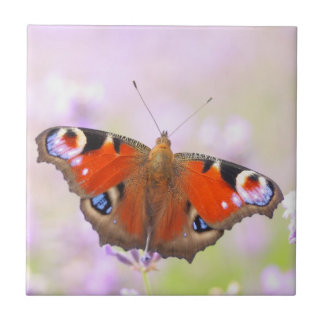 peacock butterfly over lavender ceramic tile